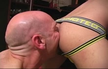 Bald Bear Licks Boy's Ass